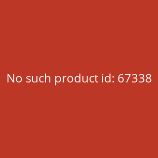 Zippo Anne Stokes Scarlet Mage 60003923
