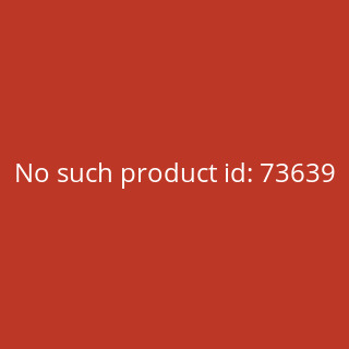 Zippo Skeleton and Rose 60005230